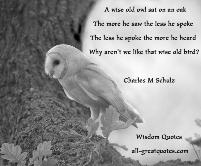 Wisdom Quotes Wise Quotes And Sayings - A wise old owl sat on an oak The more he saw the less he spoke  The less he spoke the more he heard  Why aren't we like that wise old bird?  Charles M Schulz - Picture Quotes