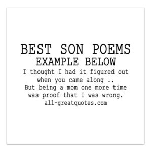 Son Poems I thought I had it figured out when you came along