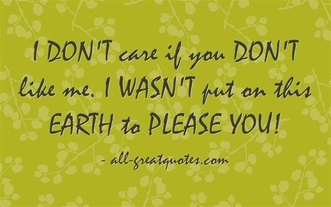 I DON'T care if you DON'T like me. I WASN'T put on this EARTH to PLEASE YOU!