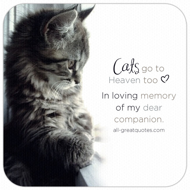 In-Loving-Memory-Card-Pet-Loss