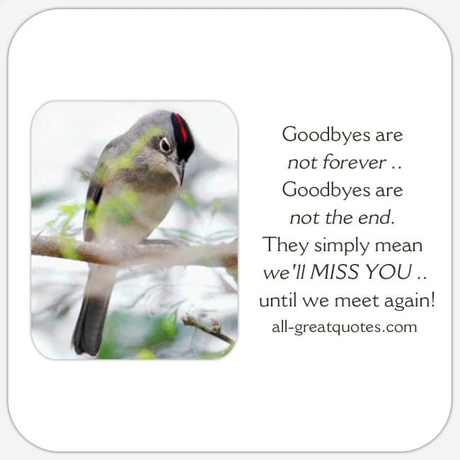 Goodbyes-are-not-forever-Goodbyes-are-not-the-end