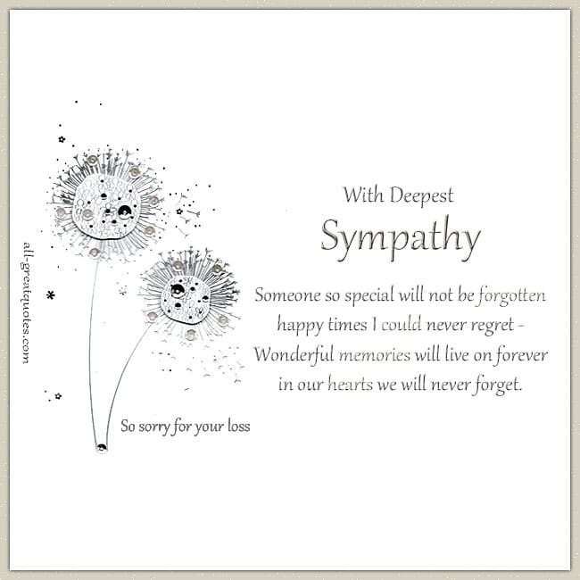 Sympathy Condolences Cards Someone So Special Will Not Be Forgotten