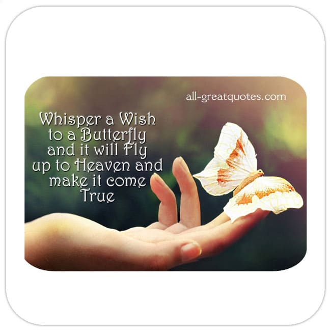 Whisper-a-Wish-to-a-Butterfly-and-it-will-Fly-up-to-Heaven-and-make-it-come-True