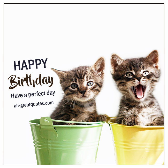 Happy Birthday Cards Kittens Picture For Facebook