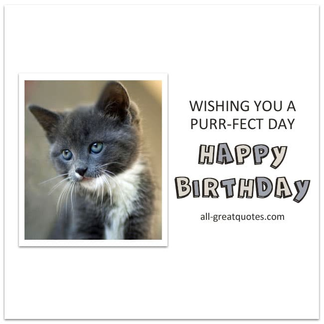 Happy Birthday Wishing You A Purr - Fect Day