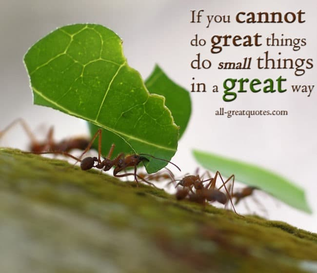 If You Cannot Do Great Things Do Small Things In A Great Way Napoleon Hill