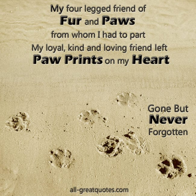 My four legged friend of fur and paws from whom I had to part My loyal, kind and loving friend left paw prints on my heart - In Loving Memory - Pet Loss