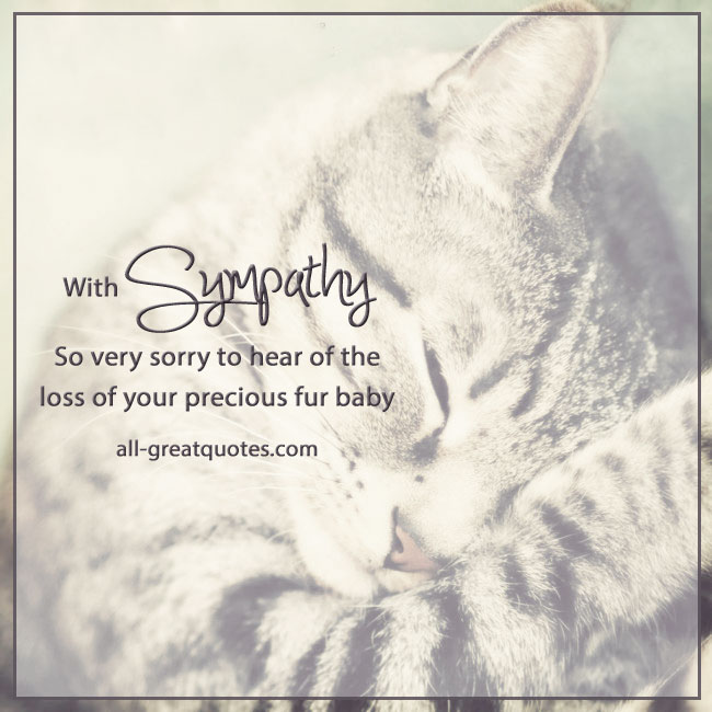 Pet sympathy card pictures loss cat fur baby