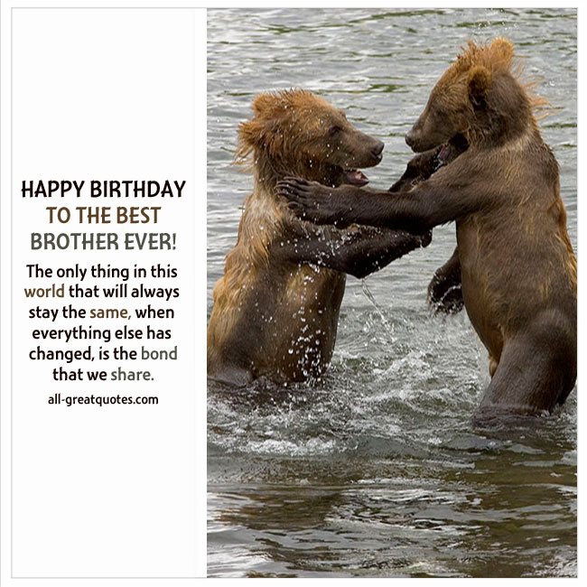 Happy Birthday Brother Greeting Cards