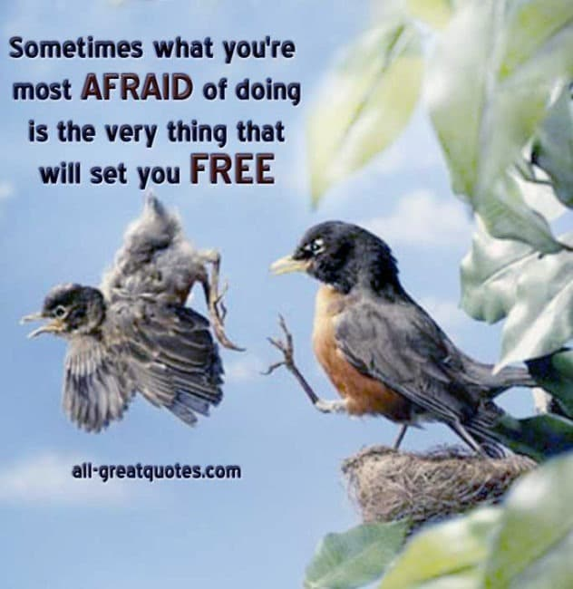 Sometimes-what-youre-most-afraid-of-doing-is-the-very-thing-that-will-set-you-free-Picture-Quotes-About-Life