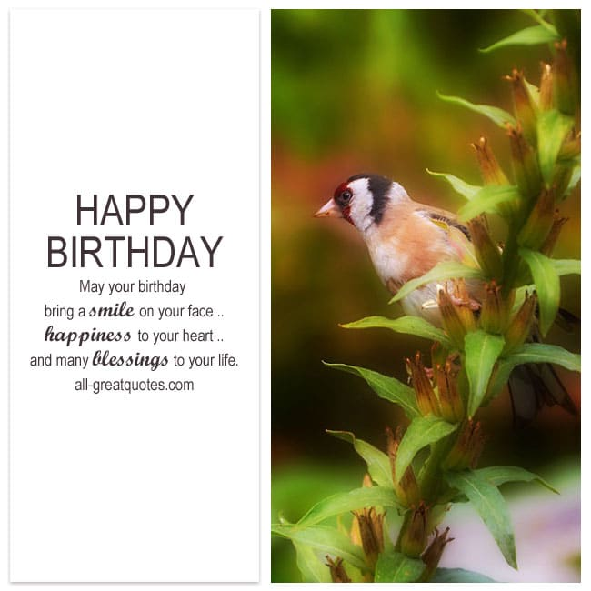 May your birthday bring a smile to your face happiness to your heart free birthday cards