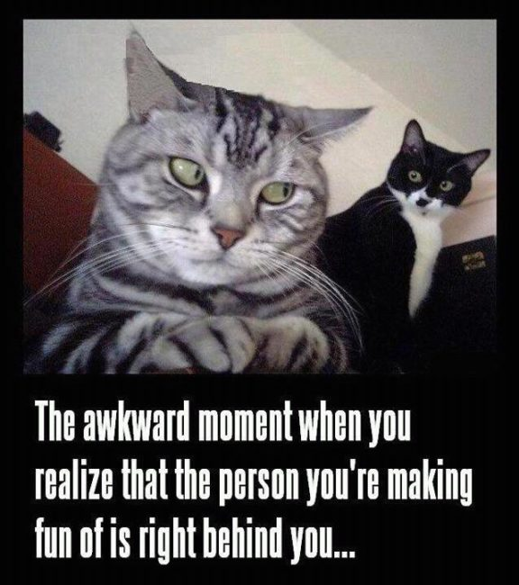 Funny Pictures With Captions 25