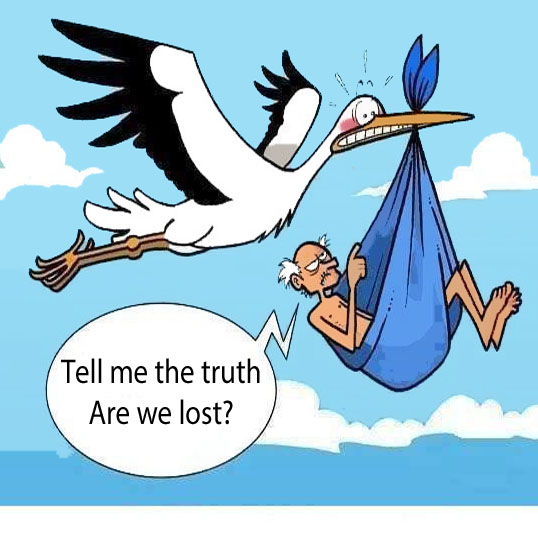 Tell Me The Truth Are We Lost Funny Pictures Wish Captions