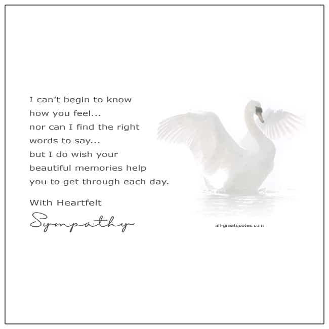 With Heartfelt Sympathy I Can't Begin To Know Sympathy Card