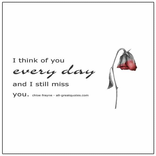 I Think Of You Everyday And I Still Miss You Grief Loss Quotes