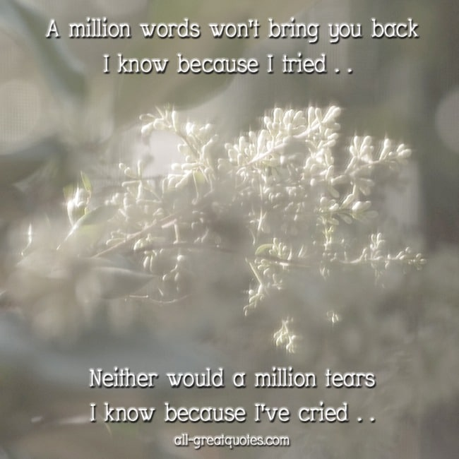 A million words won't bring you back I know because I tried