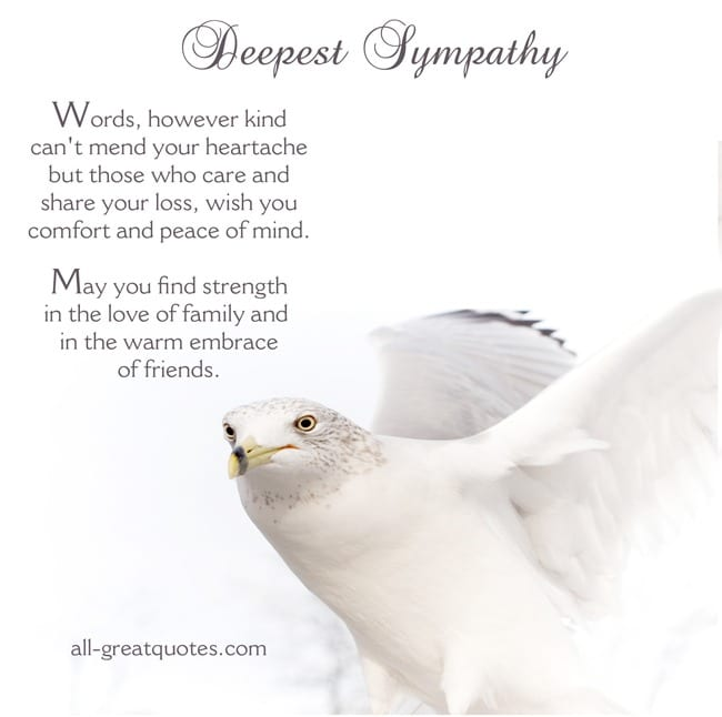deepest sympathy card words of comfort for grief and loss
