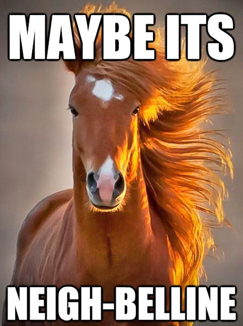 Funny Pictures With Captions Maybe It's Neigh-Belline