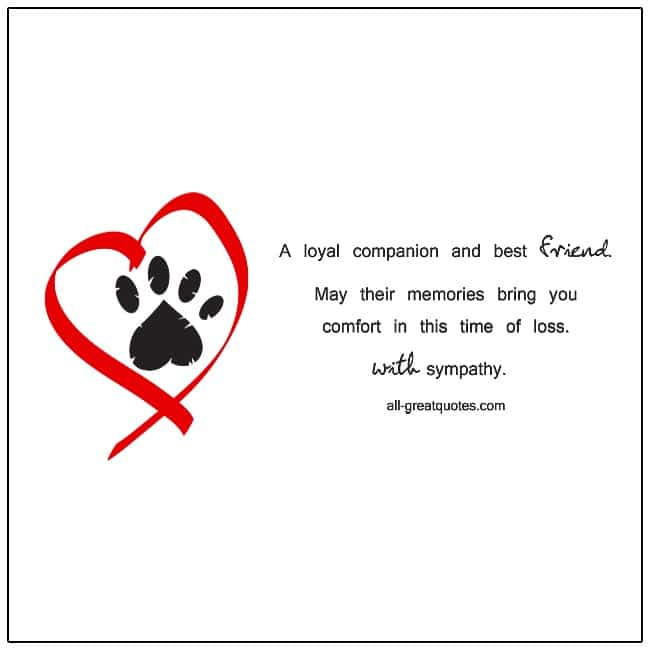 Sympathy Cards For Pets - A loyal companion and best friend