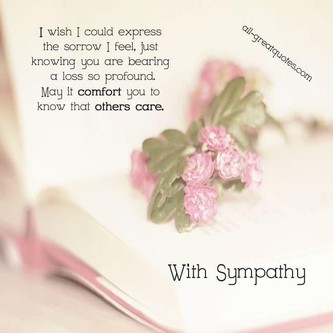 With Sympathy - I wish I could express the sorrow I feel