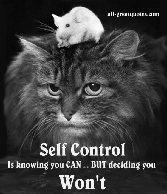 self control is knowing you can but deciding you wont picture quotes