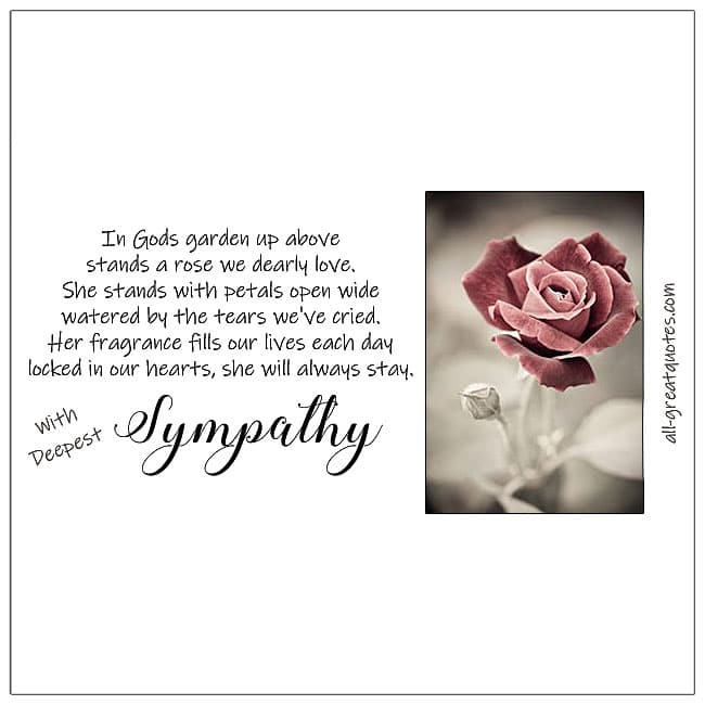 In Gods garden up above stands a rose we dearly love sympathy card with rose