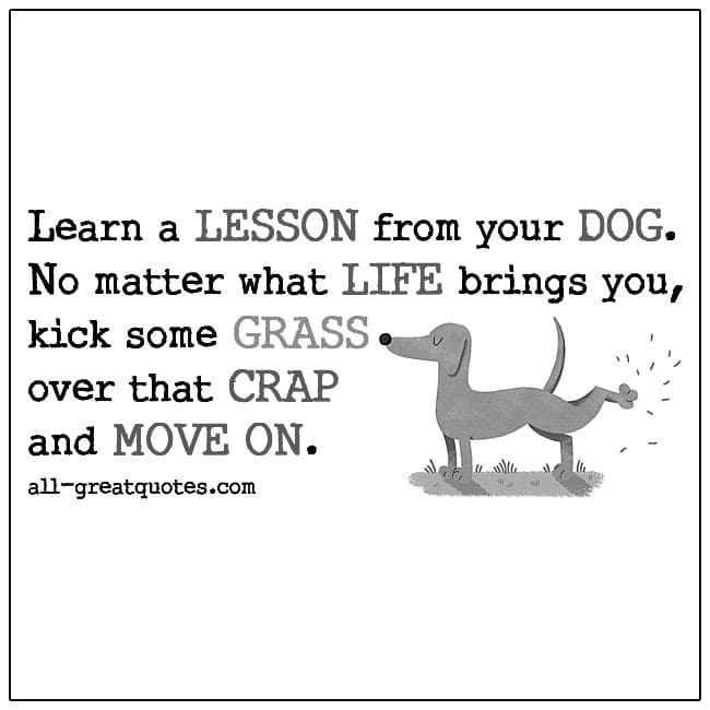 Learn A Lesson From Your Dog No Matter What Life Brings You Funny Quotes