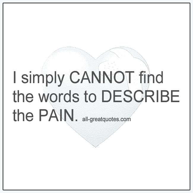 I Simply Cannot Find The Words To Describe The Pain Grief Quotes