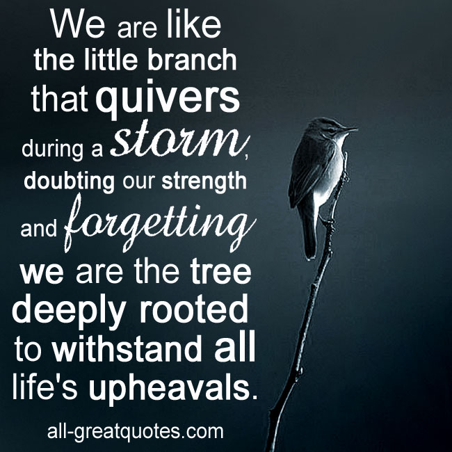 We are like the little branch that quivers during a storm quotes