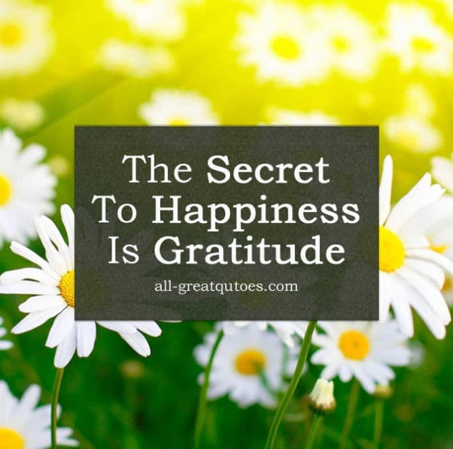 The Secret To Happiness Is Gratitude