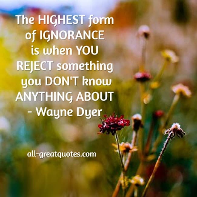The-highest-form-of-ignorance-is-when-you-reject-something-you-don't-know-anything-about.