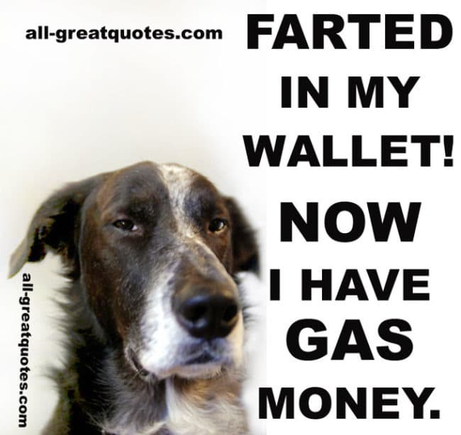 farted in my wallet now i have gas money