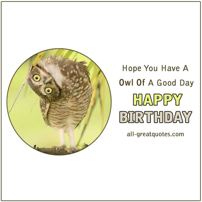 Happy Birthday - Hope You Have A Owl Of A Good Day. Funny Birthday Cards For Facebook