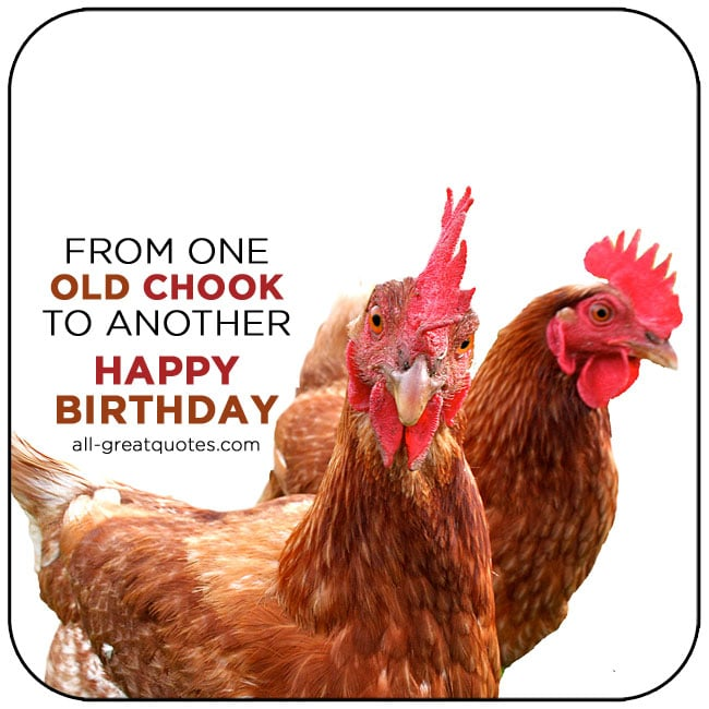 Happy Birthday From One Old Chook To Another Free Birthday Cards