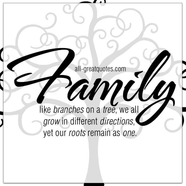 Family, like branches on a tree, we all grow in different directions