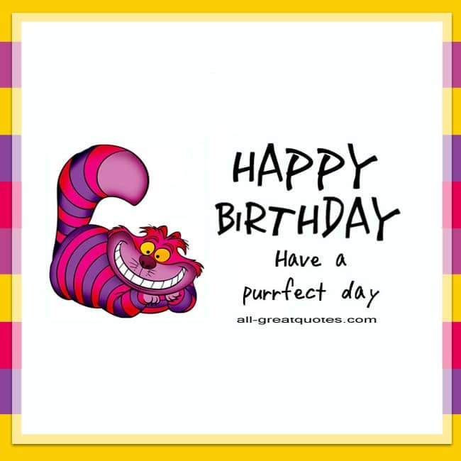Happy Birthday - Have A Purrfect Day