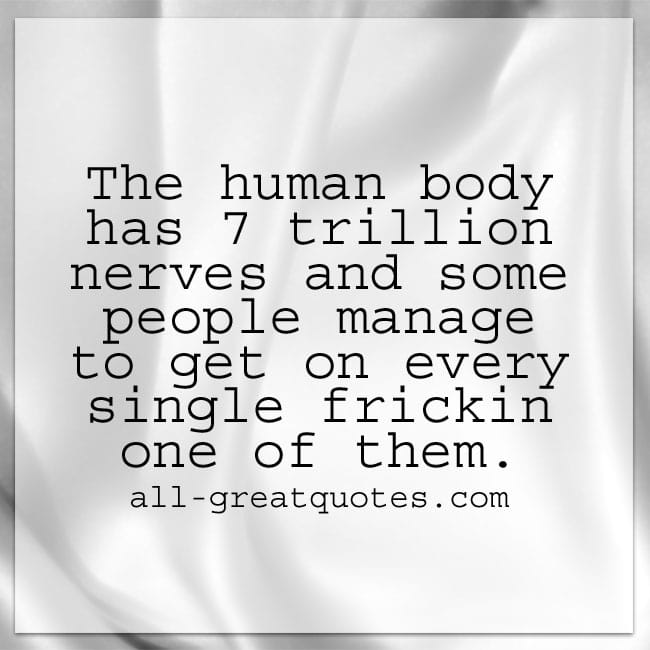 The human body has 7 trillion nerves | Funny Quotes