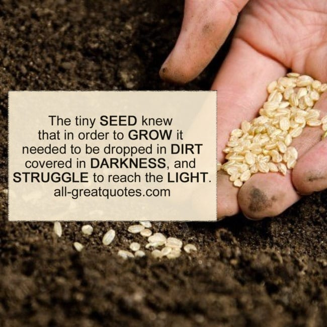 The tiny SEED knew that in order to GROW | Picture Quotes