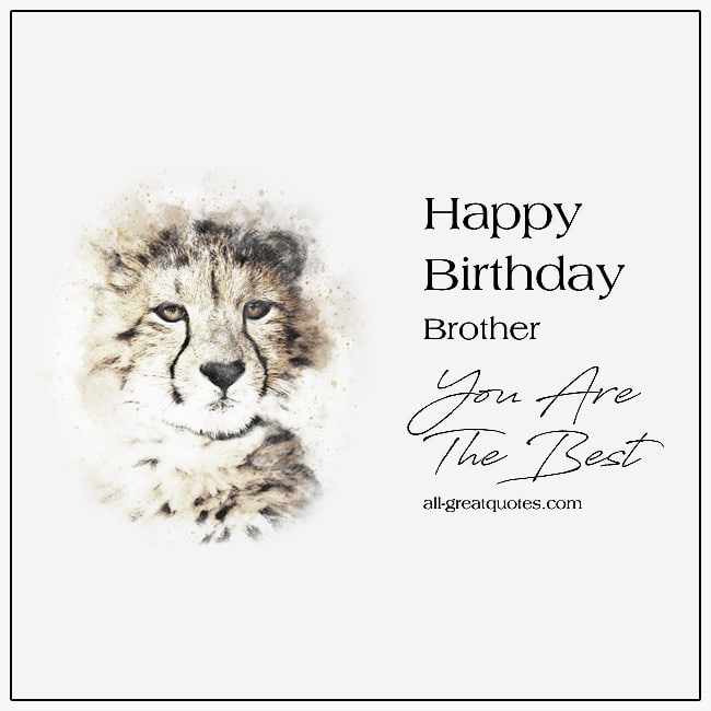 Happy Birthday Brother Card You Are The Best