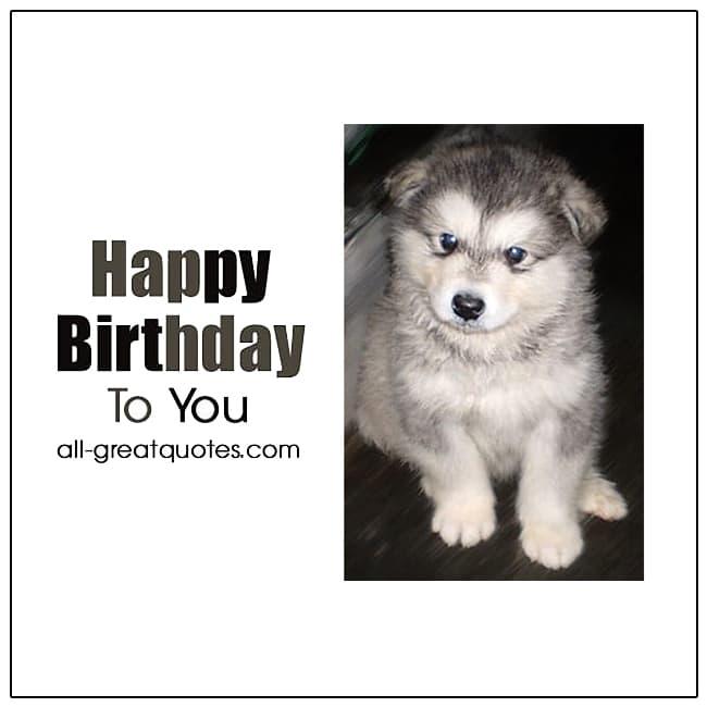 Happy Birthday To You Husky Puppy Birthday Cards