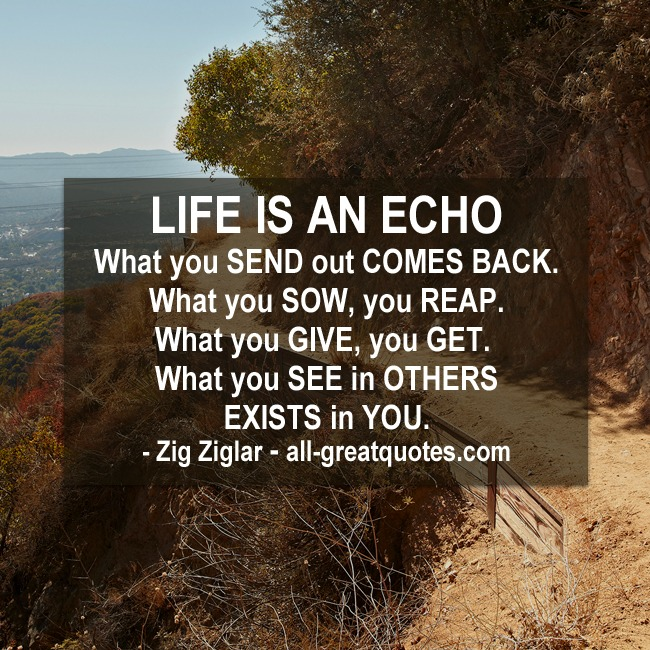 Life Is An Echo Quote Delectable Life Is An Echowhat You Send Out Comes Back  Zig Ziglar