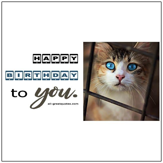 Happy Birthday To You Kitten Birthday Card