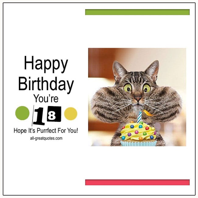 Happy Birthday. You're 18. Hope It's Purrfect For You. 18th Birthday Card
