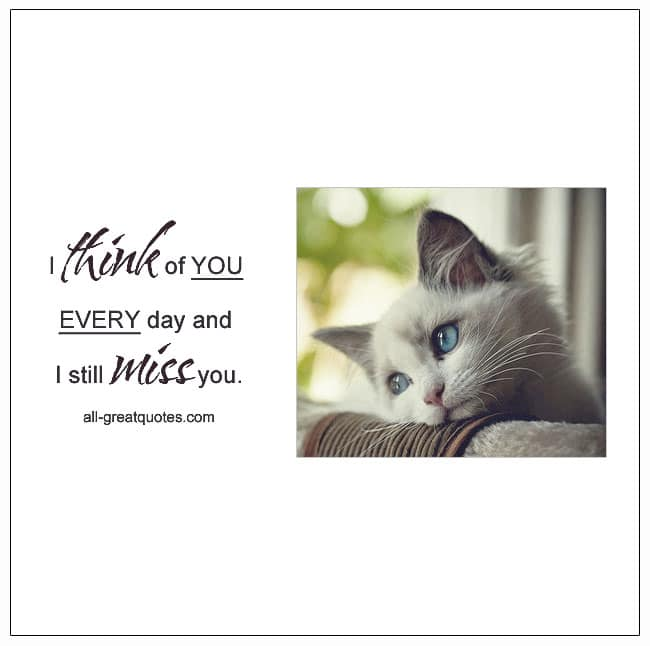 I Think Of You Every Day And I Still Miss You Grief Quotes Pet Loss