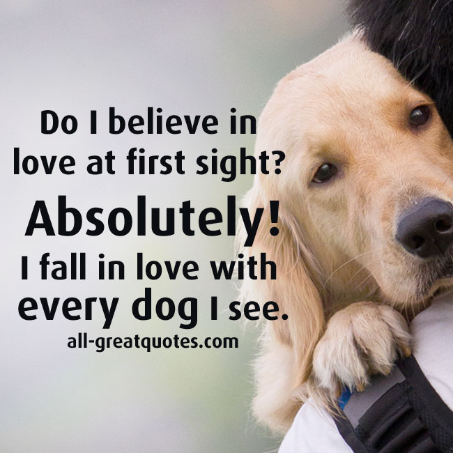 Do I believe in love at first sight Absolutely. I fall in love with every dog I see.