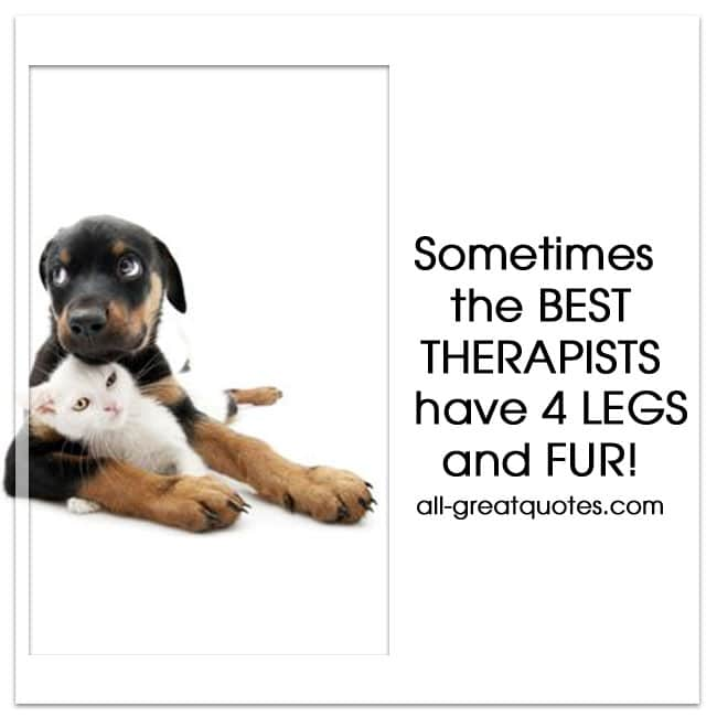 sometimes the best therapists have 4 legs and fur.