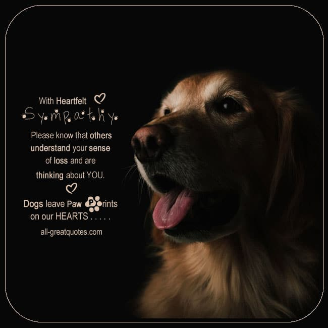 With-heartfelt-sympathy-Dogs-leave-paw-prints-on-our-hearts