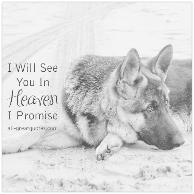 I Will See You In Heaven I Promise Dog Grief Loss Card