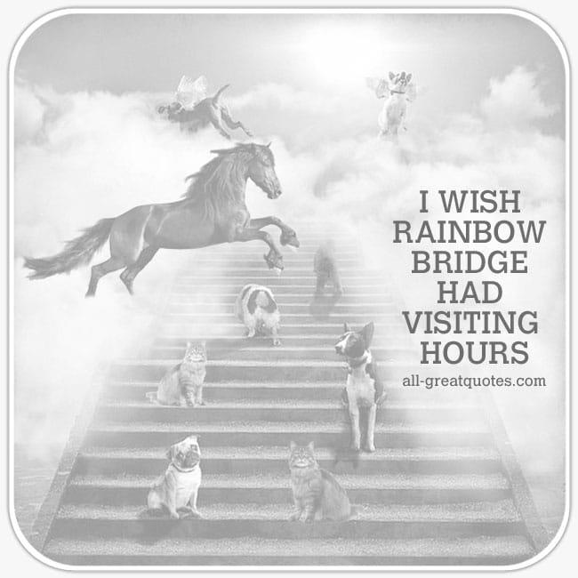 I-wish-rainbow-bridge-had-visiting-hours-pet-loss