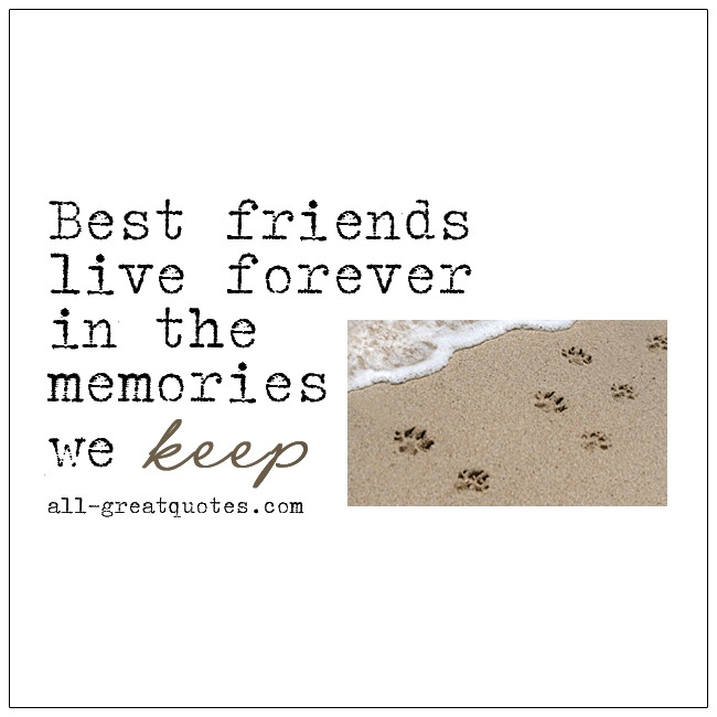 Best Friends Live Forever In The Memories We Keep Pet Loss Grief